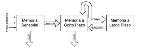esquema memoria