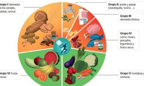 La rueda de los alimentos 2020
