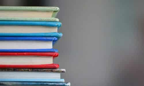 libros sophie saint rose