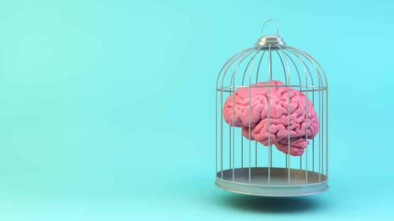 pensamiento dicotomico