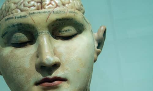 master neuropsicologia