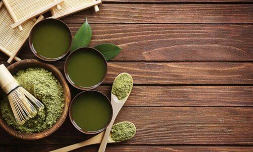 cursos herbodietetica online